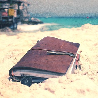 Traveler's Notebook on Egg Island