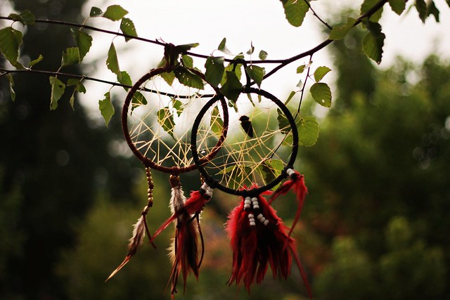 Homemade dream catchers - EXPLORE #140