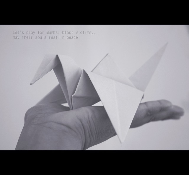 What Does A Origami Crane Symbolize