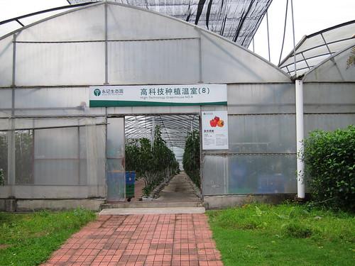 High-Technology Greenhouse