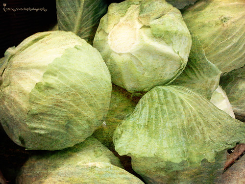 All mothers think their children are oaks, but the world never lacks for cabbages ~ Robertson Davies