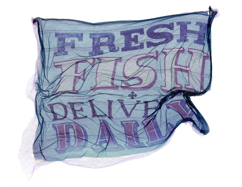 Fresh Fish Delive Daily.
