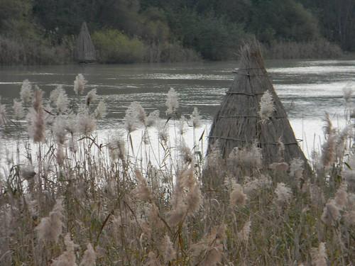 Oasi del Lago di Serranella