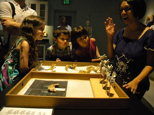 Forensic Anthropology Lab - National Museum of Natural History - Photo by Leticia (Tech Savvy Mama)