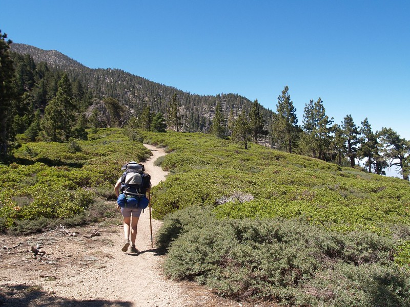 San Bernardino Peak Trail - Approaching the Columbine Spring Trail Junction