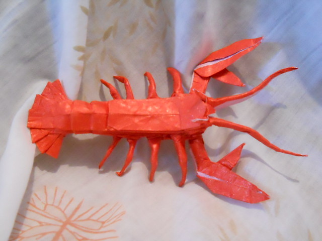 Maine Lobster By Origamifreak64 On Flickr