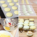 Lemon, Lime & Bitters Macarons