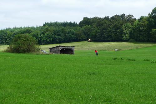 Landschaft bei Weickhartsheim mit Blick auf die Hütte von Martina Schoder. Ende Juli 2011