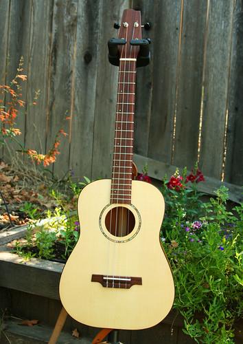 Dry Creek Guitar Baritone Ukulele by Laura O Photo