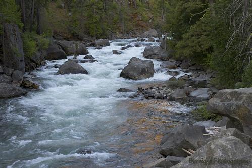 nature creek outdoors washington scenic cascades icicle leavenworth