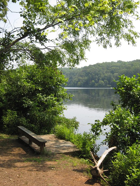 Holliday Lake