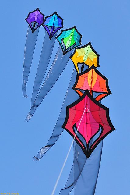 Kite-Flying (20110814-135735-PJG 01)