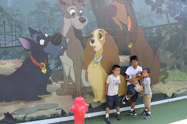 The boys visit poppins at the disneyland kennel club for Dog kennels near disney world