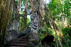 Banyan Tree Temple