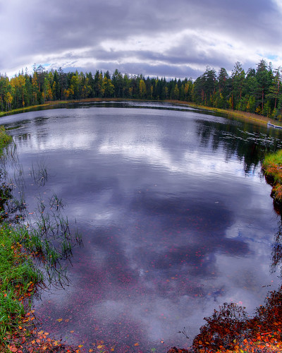 autumn sky panorama distortion reflection fall nature water leaves clouds finland landscape geotagged pond foliage hdr mäntsälä tonemapped tonemap 3exp handheldhdr ahvenlampi