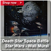 Death Star Space Battle Wall Mural Panel 200 x 200
