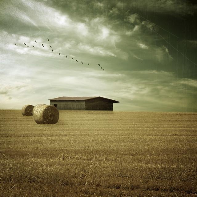 ~ the old farm ~