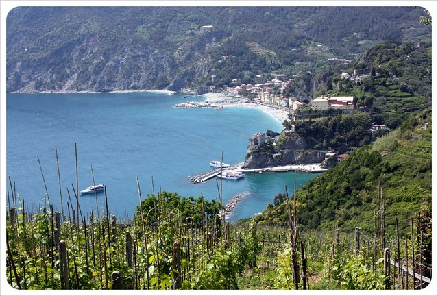Cinque Terre vineyard & Monterosso view