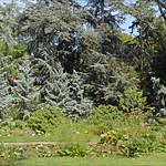 ภาพของ Marais. france boulognebillancourt dalbera jardinalbertkhan