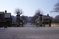 Westfield Memorial Village (duplicate), with man & dog, Lancaster 4/74