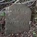Marshall Family Cemetery (#166)