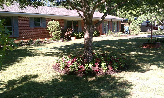 Landscaping landscaping ideas front yard san antonio tx for San antonio landscaping ideas
