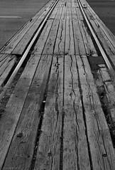 UW Tacoma Tracks