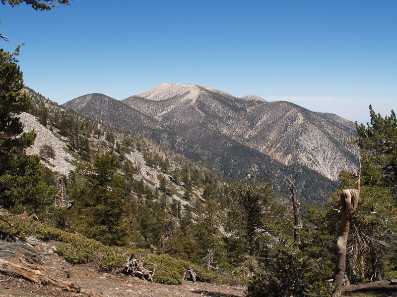 San Gorgonio Mountain, with Jepson Peak, Dobbs, and the two Charltons