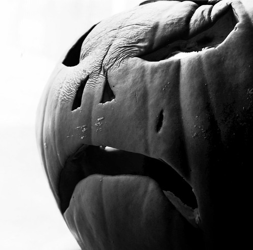 2010 Pumpkin by Juli Kearns (Idyllopus)
