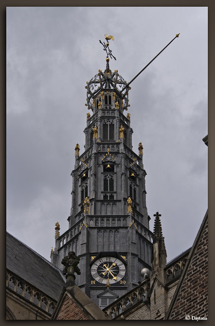 Toren St Bavo kerk Haarlem-6274