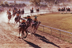 rodeo(0.0), cattle-like mammal(0.0), western riding(0.0), equestrian sport(0.0), pack animal(0.0), chariot racing(0.0), barrel racing(0.0), animal sports(1.0), racing(1.0), sports(1.0), traditional sport(1.0),