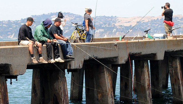 Fishing the san francisco bay near the golden gate for Fish and farm sf