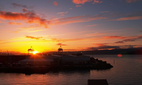 ocean morning light sea reflection water ferry sunrise dawn dock cloudy harbour cranes wellington containers
