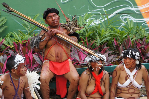 anthropology paper the yanomamo tribe Yanomami is the indians' self-denomination a yanomami tribe is shown, and they share with the main characters their drug visual anthropology.