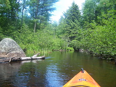 Narrow Passage Between Rollins Pond and Poliwog Pond