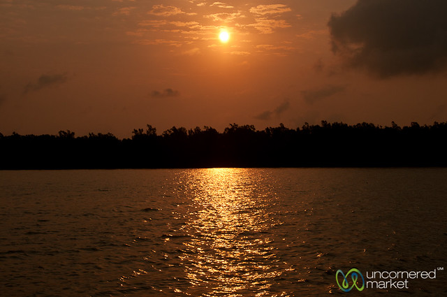 Sunrise in the Sundarbans - Bangladesh