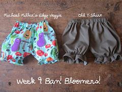 Week 9: Bam! Bloomers!