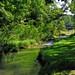 Small photo of Arkansaw Creek