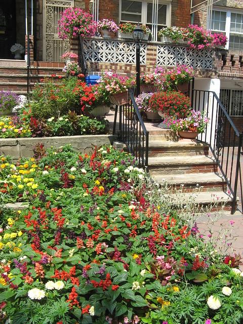 Greenest Block in Brooklyn 2011 finalist at East 39th Street between Foster Avenue and Farragut Road.