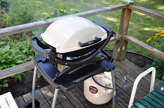 weber q 100 my new gas grill my old one caught fire. Black Bedroom Furniture Sets. Home Design Ideas
