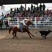 Sarpy Fair Rodeo 439