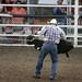 Sarpy Fair Rodeo 441