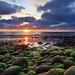 Green rocks and sunset (Explored) by Ó.Guð