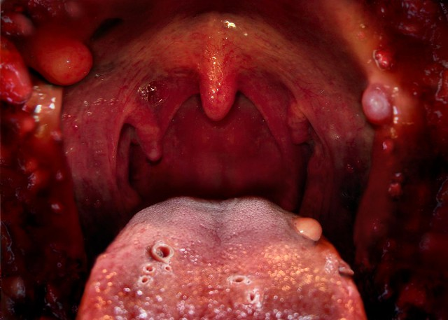 The Mouth | Flickr - Photo Sharing!