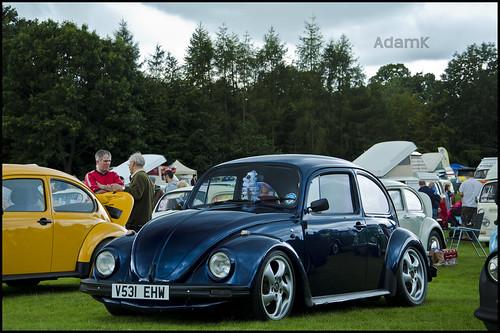 Jez's Beetle