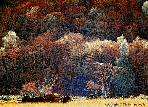 painterly nature landscape vermont infrared impressionism scenics mapletrees hwy100 lateafternoonsunlight fallfolige topazclean philipleemiller