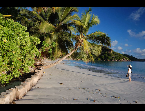 africa nikon sigma seychelles 1770 praslin d40 sigma1770 ansevolbert nikond40 1770mmf284dcmacrooshsm