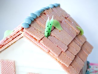 Molly Birthday cake roof