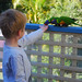 Leo feeding the lorikeets