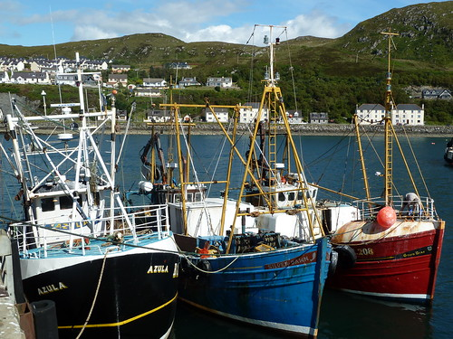 Fishing Boats at Mallaig Harbour, Scotland